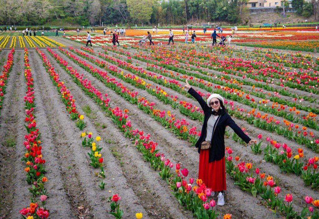 เทศกาล Hamura Flower and Water Festival