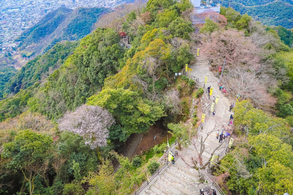 ปราสาทกิฟุ Gifu Castle