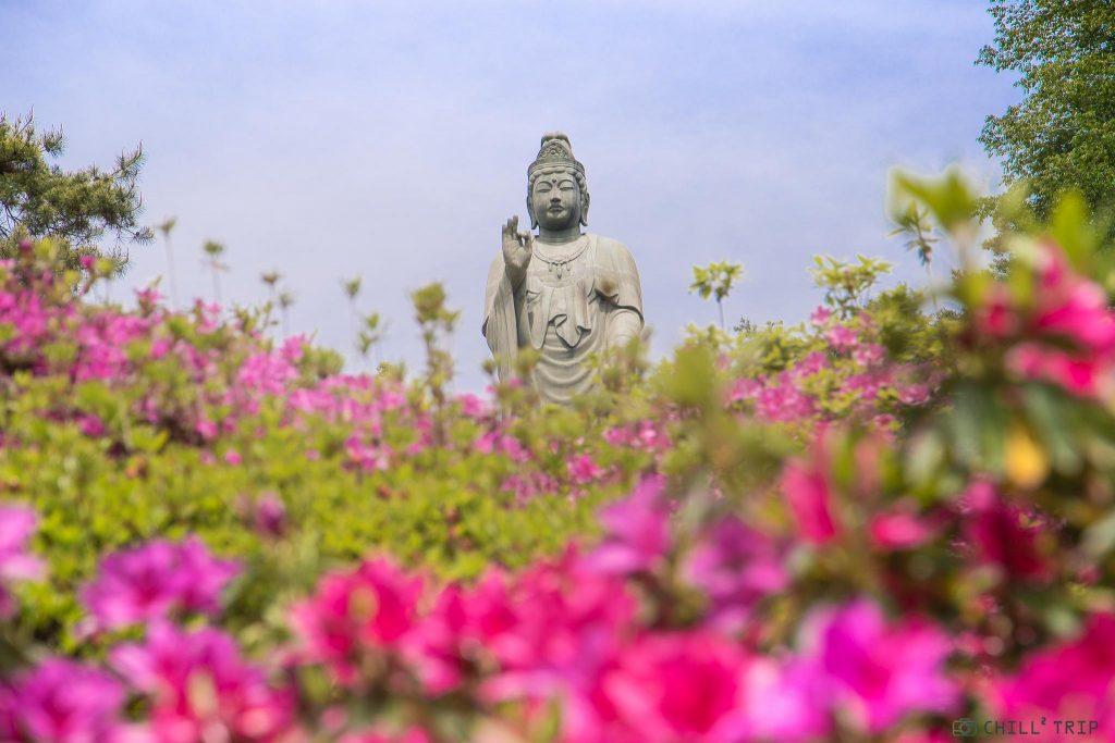 วัดชิโอฟุเนะคันนอน (Shiofune Kannon Temple)